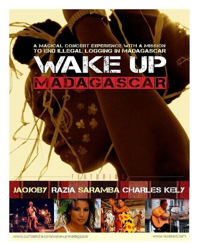 Musical Activism: Wake Up