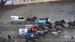 Welfare Groups Go After Chuckwagons After
