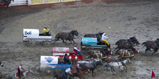 Calgary Stampede Chuckwagon Accident: Vancouver Humane Society Wants Races Stopped After Crash Kills...