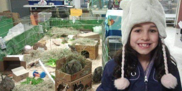 Vancouver Island Girl's SPCA Donation Goes Viral On Reddit