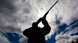 Tories Seek Supplier For Massive Gun Mail-Out