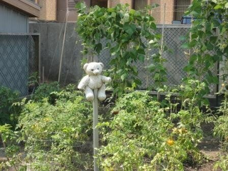 The Italian Garden That Overwhelms and