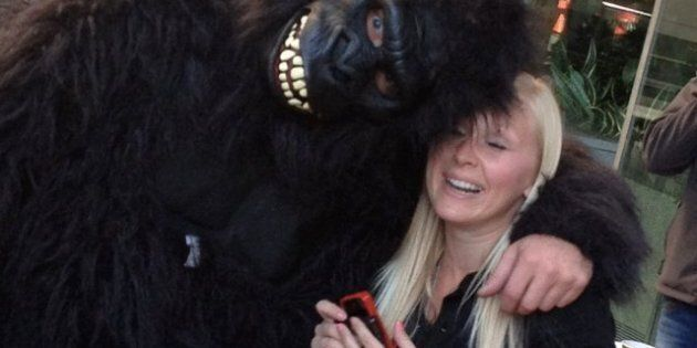 Derek Todd: Shaunna Undseth's Boyfriend, Dressed In Gorilla Suit After Rapelling Off Building,