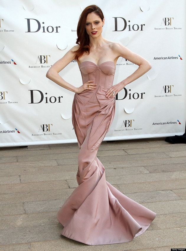 Coco Rocha's Zac Posen Dress: Canadian Model Upstages Celebs At Ballet