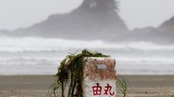 2 Years Later: How Japan Tsunami Affects