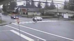 WATCH: B.C. Pedestrian Goes