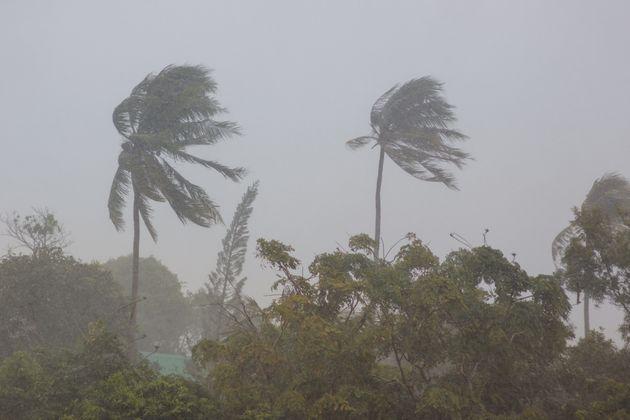 Tunisie – Alerte météo : Des vents forts souffleront sur la plupart des