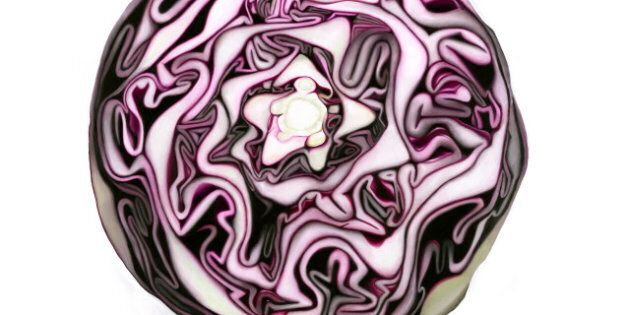 Erin Rothstein Art: Canadian Paints Amazing Images Of Toast, Cabbage And