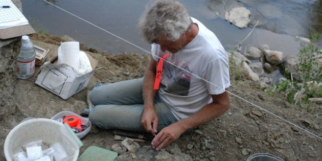 Vandals Strike Dinosaur Dig Sites In Alberta, Force Paleontologists To Take Extra