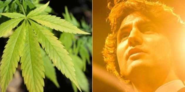 Trudeau Liberals' Marijuana Stance Is High-Risk,
