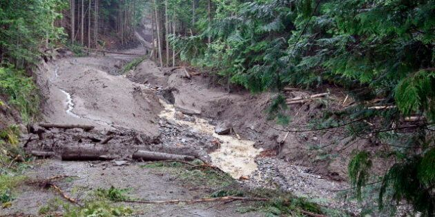 Johnson's Landing Landslide: B.C Search Resumes For Final