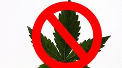 Bongs And Books Banned In