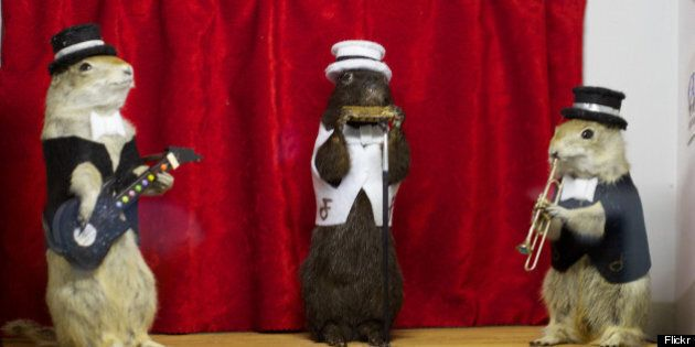 Torrington Gopher Hole Museum: Alberta's Most Insane, Hilarious Destination