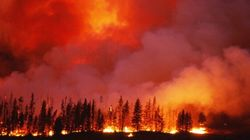U.S. Wildfires About To Meet Alberta