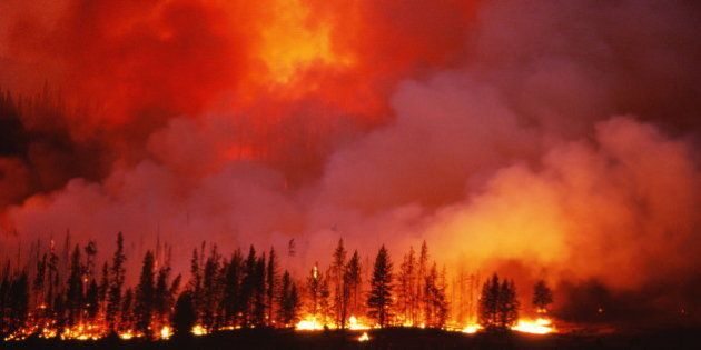 Alberta Firefighters Head To U.S. To Fight Wildfires In Idaho, Montana,