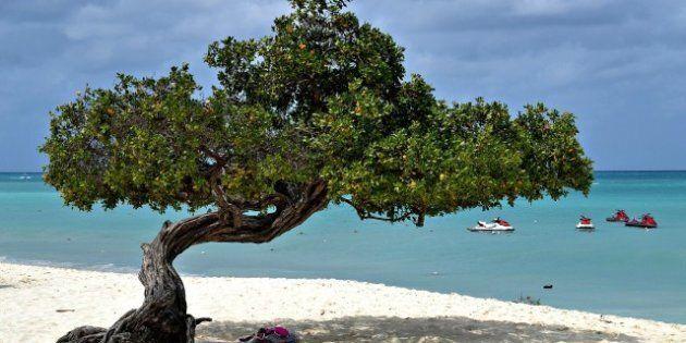 Aruba praia