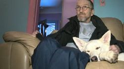 Good People Help Care For Dog Of Man Battling