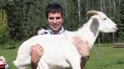 WANTED: This Goat's