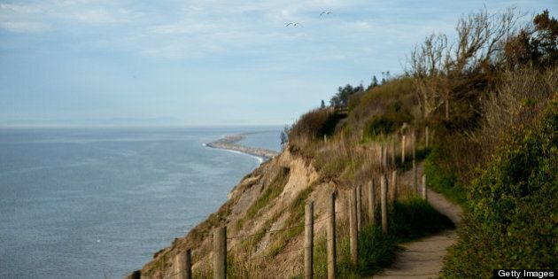 New trail on bluff above Strait of Juan de Fuca. Dungeness Spit in