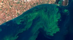 LOOK: Great Lake Is Basically A 'Dead
