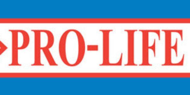 Kelowna 'Pro-Life' Flag To Fly At