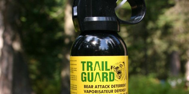 Photograph of bear attack deterrent spray. Bought in British Columbia, Canada. Height: approximately...