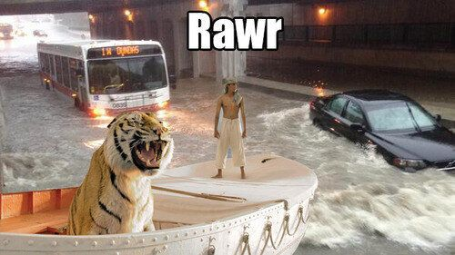 Toronto Flood Tumblr Takes A Light-Hearted Approach To Wet