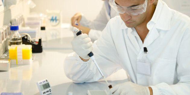 Fertility And Cancer Treatments: Stem Cells Reverse Infertility In Monkeys, Humans