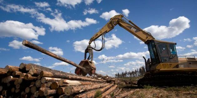 Hurricane Sandy: Richard Garneau, Resolute CEO, Says Canada's Forestry Industry To Profit From
