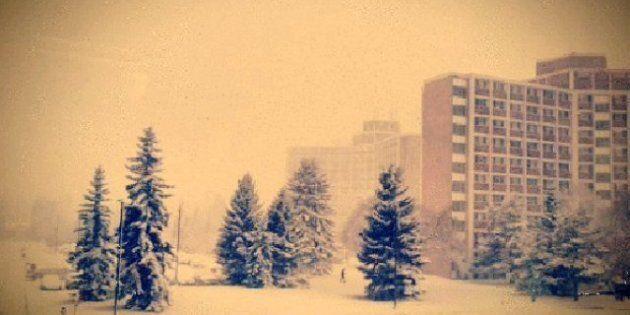 Edmonton Snowstorm: One Dead, Dozen Injured As Heavy Snowfall Blankets