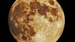 Far Side of the Moon Still Rings