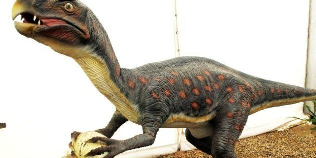 42.132923 | 8.817211 | description 1 Dinosaurios Park, Oviraptor | date 2012-06-09 | source | author HombreDHojalata  | permission | other_ ...