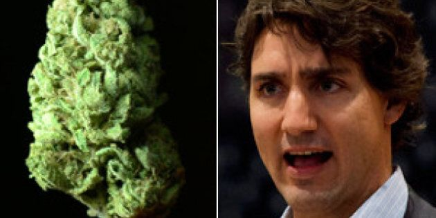 Justin Trudeau: Marijuana Decriminalization The Way To
