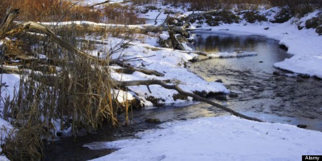 Spirit River Drowning: Four-Year-Old Boy Drowns In Northern Alberta