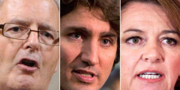 Liberal Leadership Race: The 6 Things You Need To