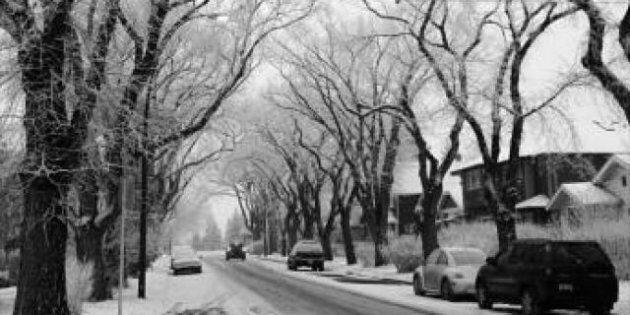 Alberta Snow Storm: Environment Canada Warns Southern Alberta, Saskatchewan To Brace For Freezing Rain,