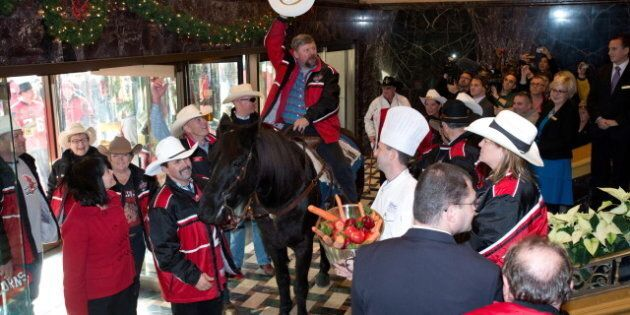 Calgary Stampeders' Horse Marty Allowed In Toronto's Royal York Hotel