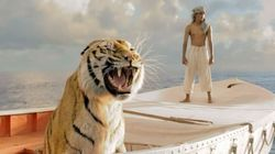 The Life of Pi Shines
