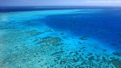 We're Putting the Great Barrier Reef at Risk for