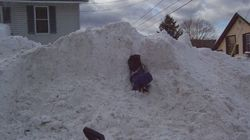 Snowbank Sex Assault Shocks