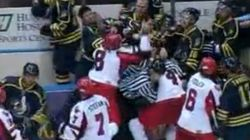 If You Care About NHL Hockey, Demand a Ban on