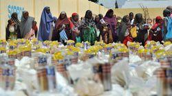 Ottawa Shuts Down International Aid