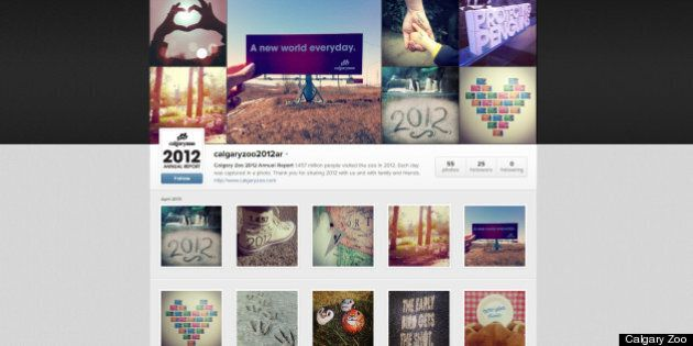 Calgary Zoo Puts Annual Report On Instagram And It Is Beautiful