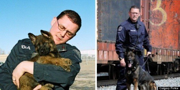 Pix, Calgary Police Dog, Retires After Eight Years Of Service