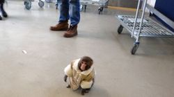 Ikea Monkey Strangled, Hit By Owners: