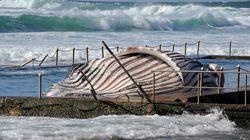 Dead Whale Puzzles B.C. Salmon