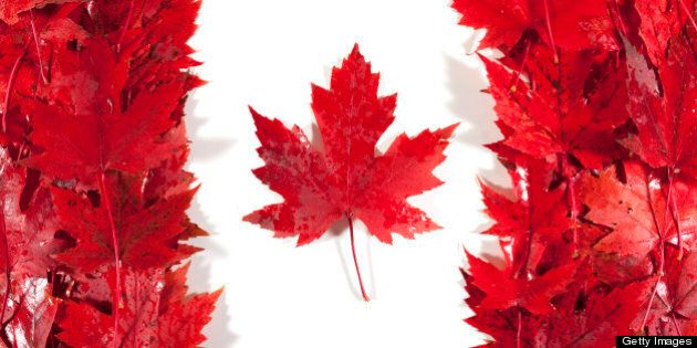Red/sugar maple leaves wet from rain are arranged to make a Canadian