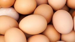 Amazing Eggs: Busting the Cholesterol