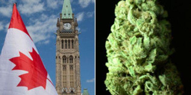 Proposed Medical Marijuana Changes Have Doctors On