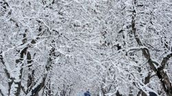 Hello Winter! Snow Squalls In The Forecast For